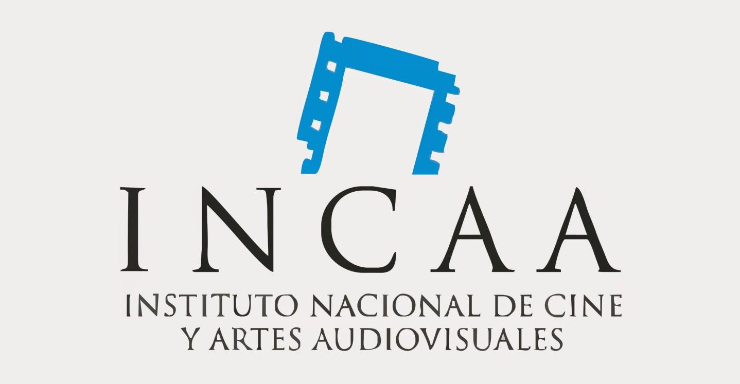 Instituto de Cine