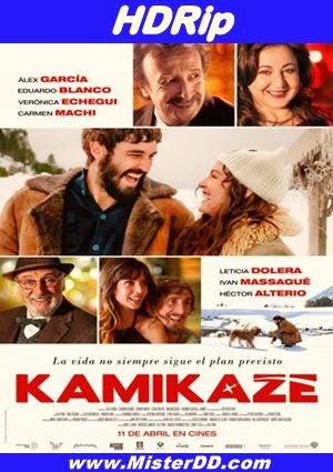 Kamikaze (2014) [HDRip]