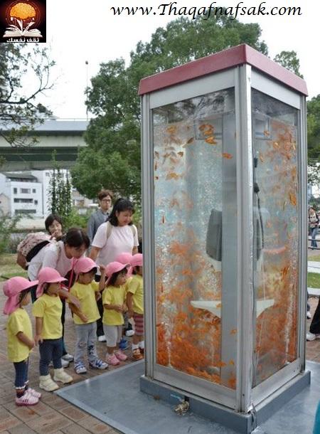 aquariumbooth02 أسماك في كابينة الهاتف
