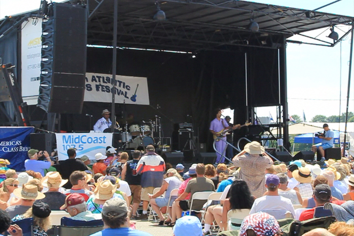 Florida Blues Festivals 2013