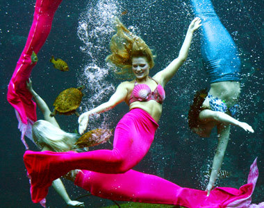 Florida Diserbu Belasan Putri Duyung Cantik [ www.BlogApaAja.com ]