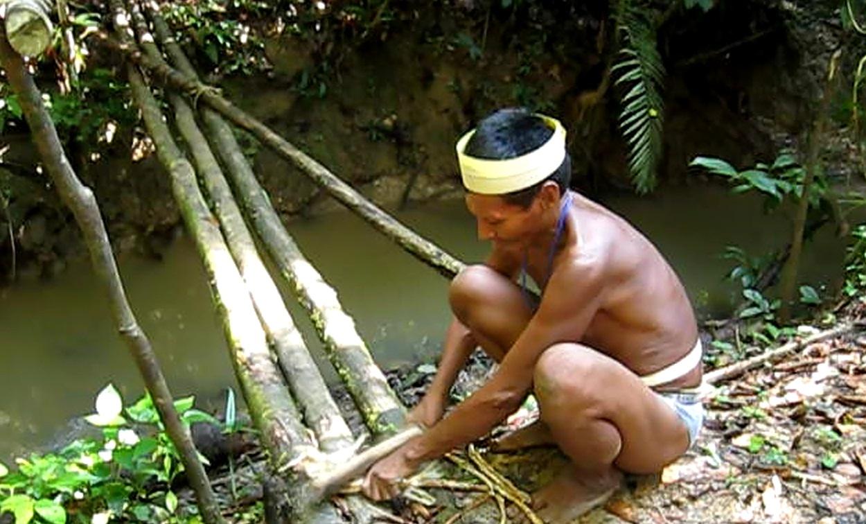external image 3-Matses+Mayoruna-Indigenous+people+customs+-+Barbasco+fishing+-+Amazon+Explorer_Iquitos_Peru.jpg