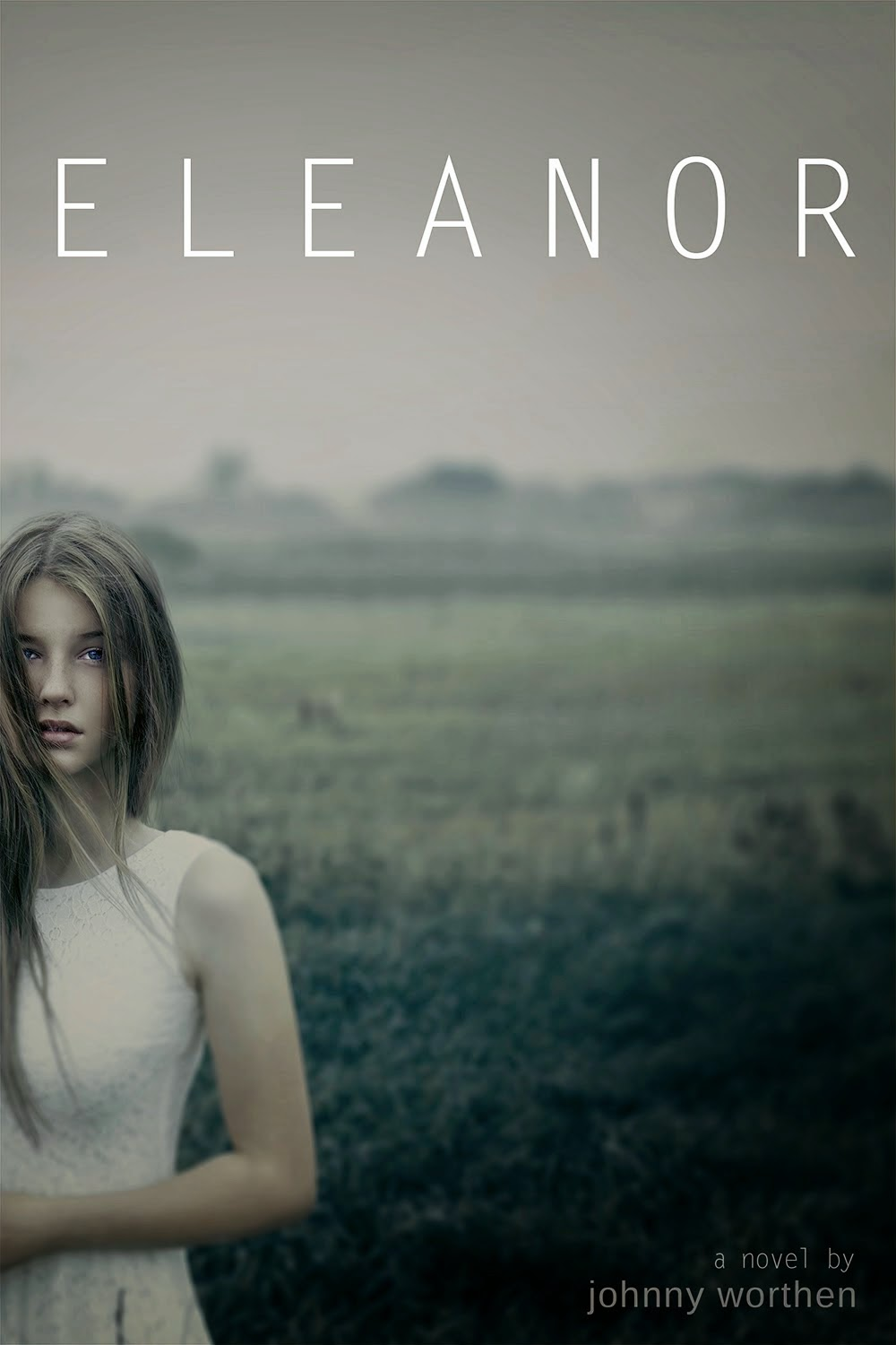 http://www.barnesandnoble.com/w/eleanor-johnny-worthen/1117389206?ean=9781939967343