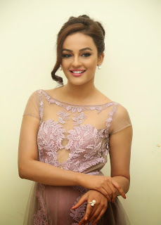 Actress Seerat Kapoor Pictures in Long Dress at Tiger Audio Launch 12.JPG