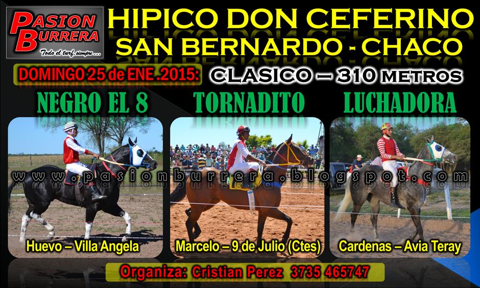 SAN BERNARDO - 25 - 310 METROS