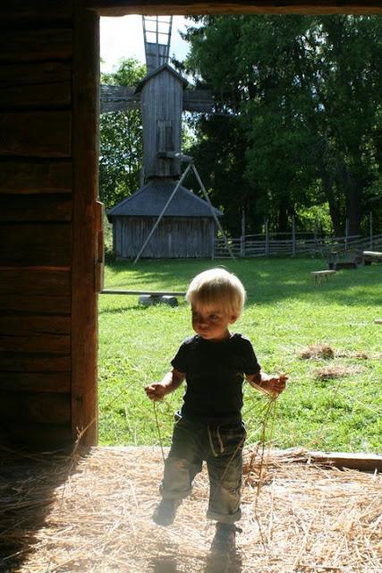 Anton in a barn