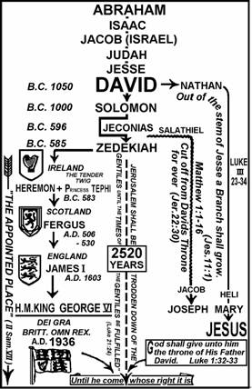 david suzuki essay ancestors the genetic source