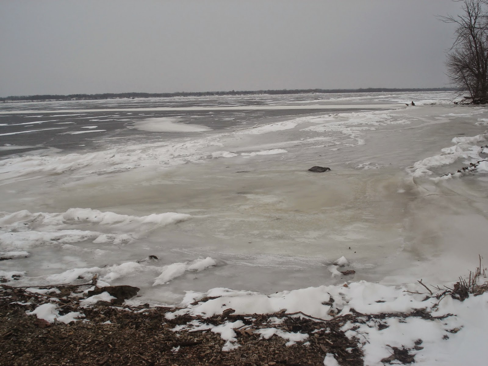So Cold That If There Wasnu0027t A $1000 Fine For Setting Foot On The Iced Over  Mississippi River, Nauvoo Missionaries Would Make A Run For It.