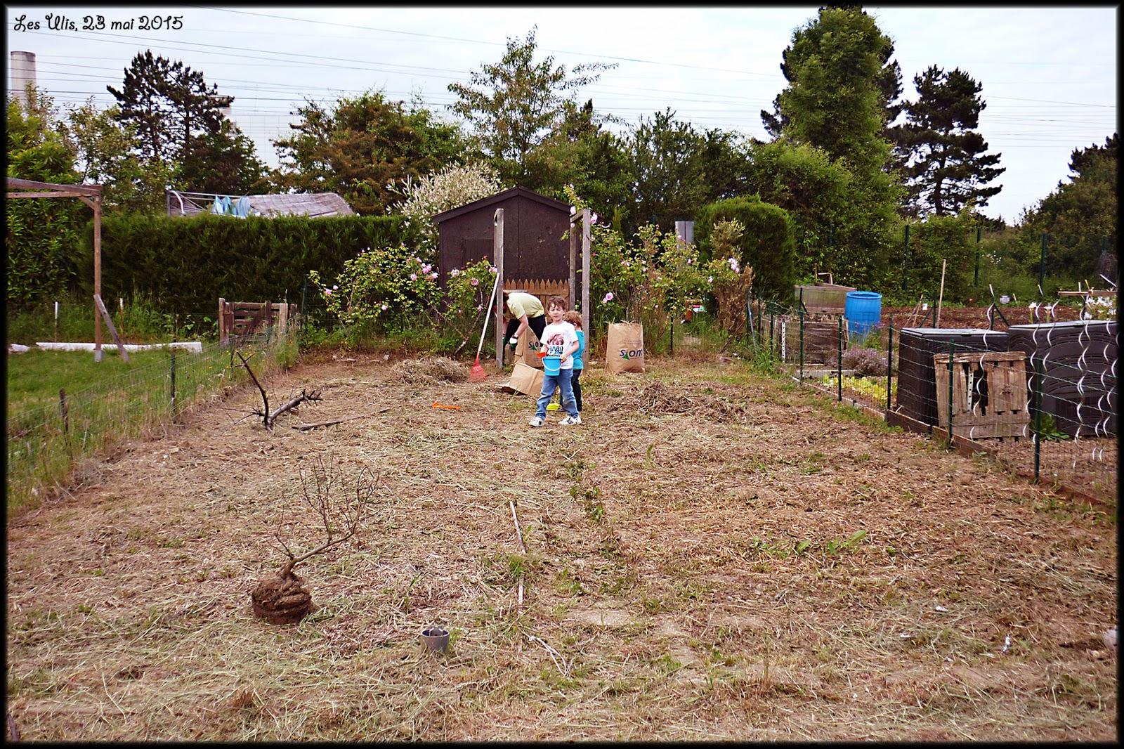 Mon Tas de Trucs: Un petit bout de jardin en ville