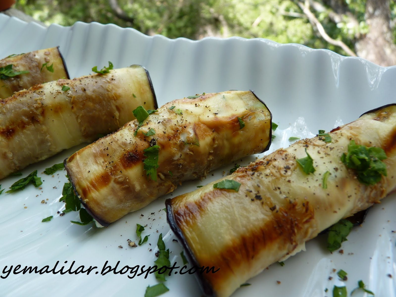 عکس غذای ژیگو
