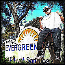 ►MR. EVERGREEN◄
