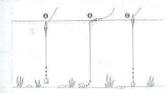 Para la pesca en hielo el motonieve