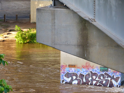 the Ripening, photo a day, graffiti, under the bridge