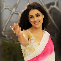 Genelia looking hot in saree