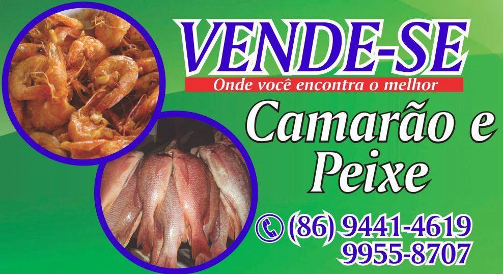VENDE-SE CAMARÃO