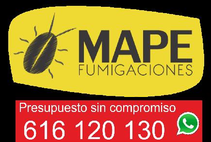 Desinsectación, Desratización, Desinfección, Legionella, Control de aves urbanas Telf. 616 120 130