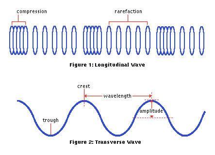 Audio, Image and Video Processing : Longitudinal and Transverse Waves