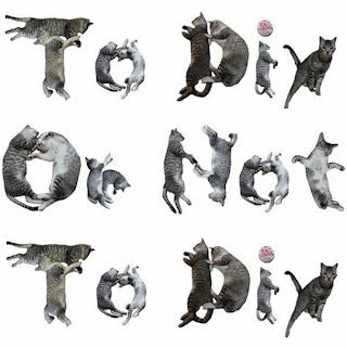 http://todiyornottodiy.blogspot.pt/2013/06/cat-font.html