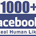 Get Free 1000 Facebook Page Like Every Day.