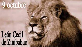 En recuerdo del León de Zimbabue