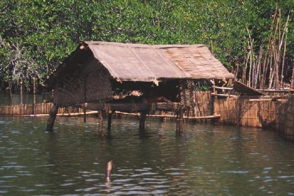 Il peccato veniale casa che fu for Piani di casa sul fiume su palafitte