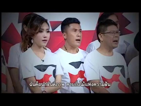 เพลง นกสันติภาพ สถานี Peace TV
