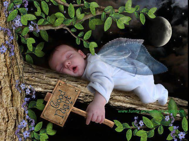 Beautiful Funny Pictures Beautiful Funny Baby Picture