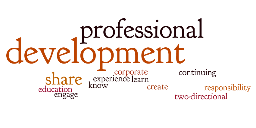 professional development wordle