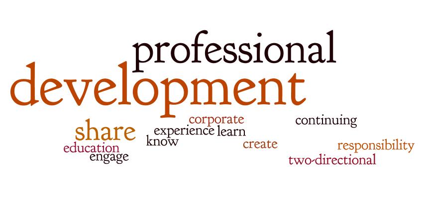 professional development wordle