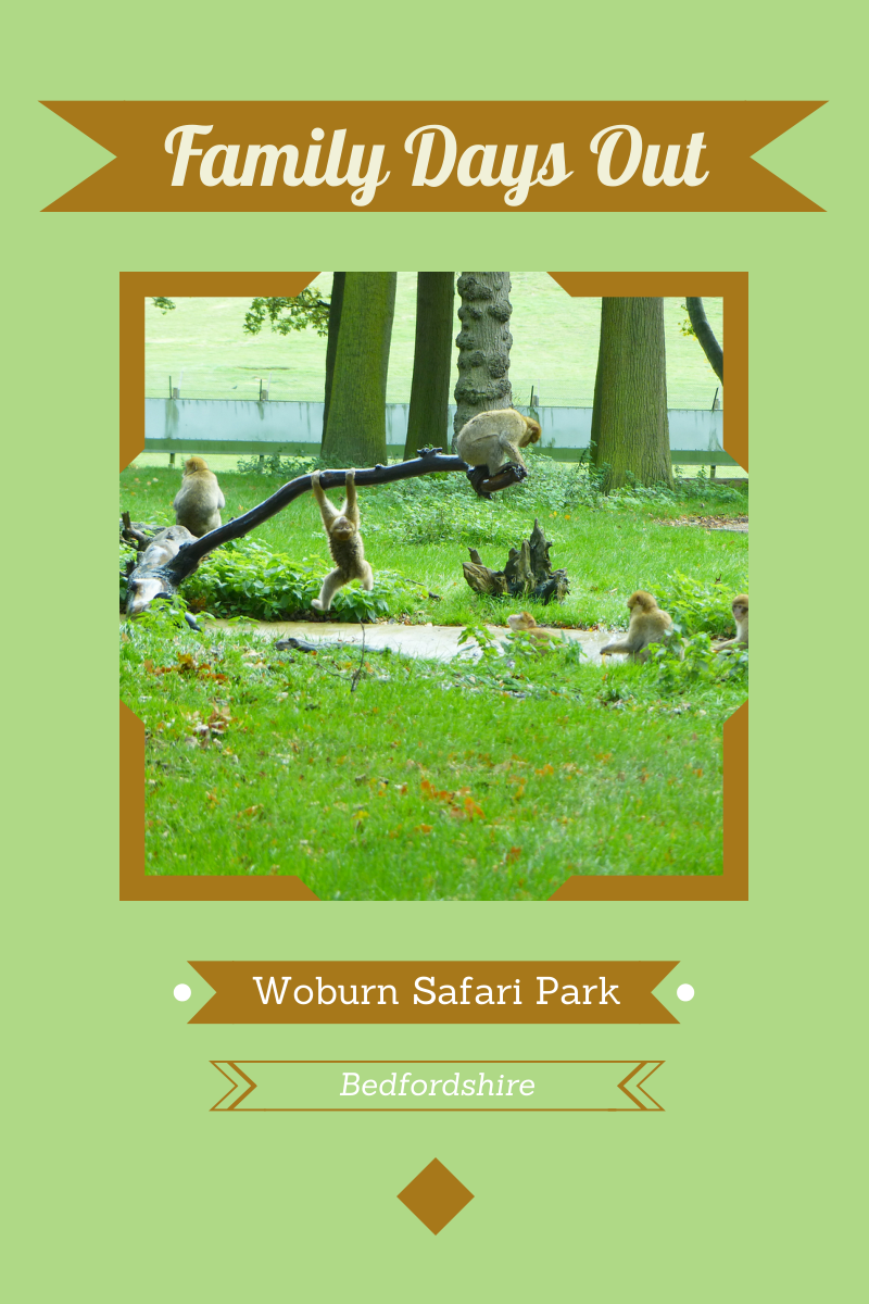 Woburn Safari Park, Bedfordshire – Part 2
