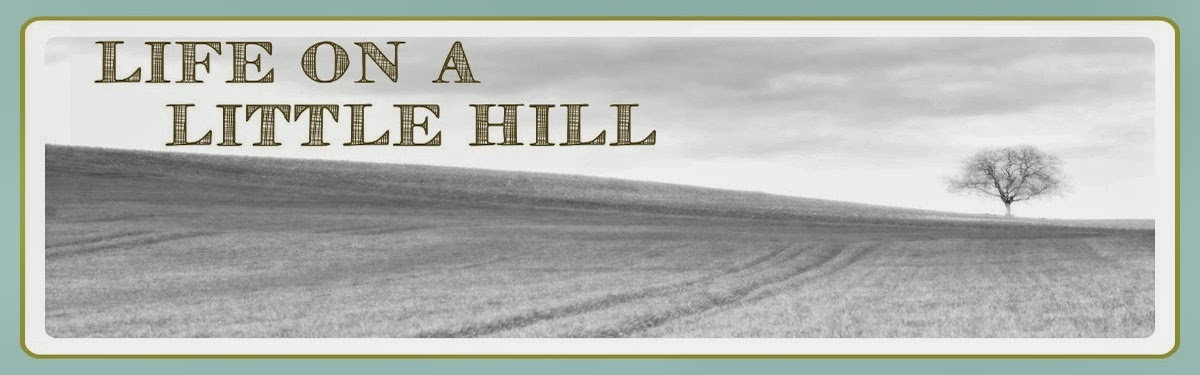 Life on a Little Hill