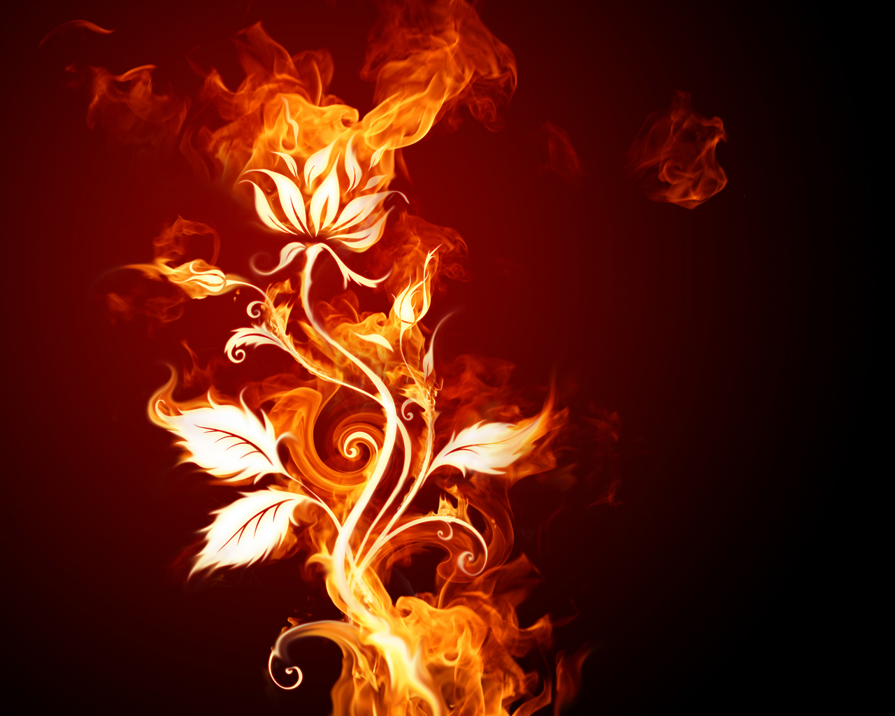 http://2.bp.blogspot.com/-Noiw19R1k5o/TdDUvwv2BZI/AAAAAAAAFBw/LKc-yjwLVAw/s1600/Wallcate.com+-++Fire+HD+Wallpapers+.jpg