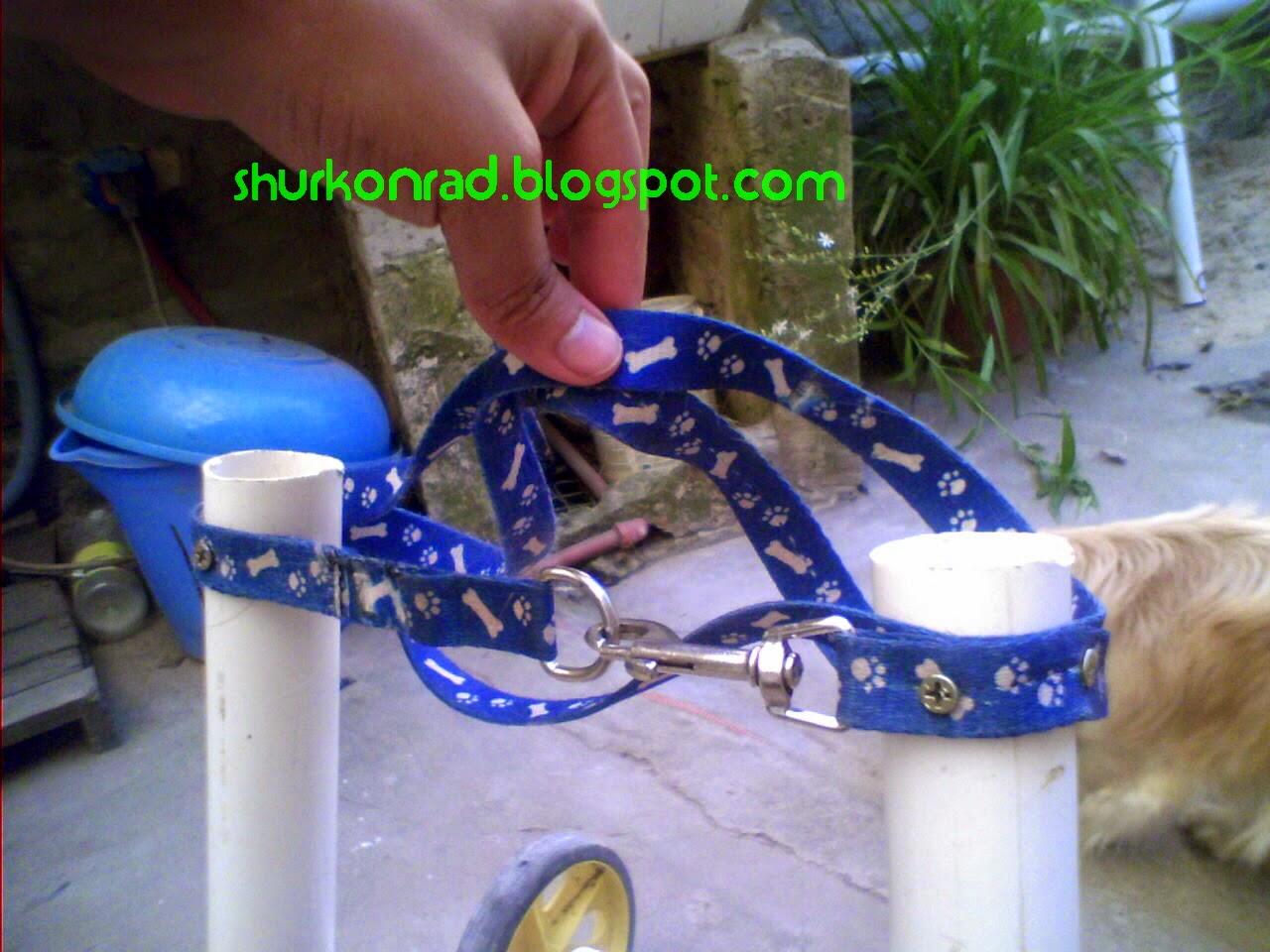 ShurKonrad perro silla ruedas dog 22
