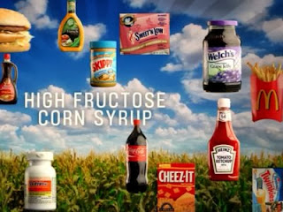 Is Fructose making people fat? 4 Is Fructose making people fat?