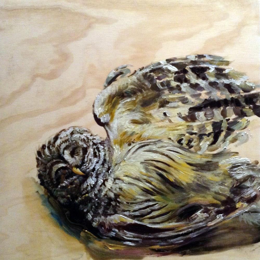 sm studio nürnberg hobbyhure owl