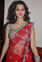 Vedika Looks Super Cute in Red Transparent Saree and Green Embroidery Lace Border Sleeveless Blouse Choli