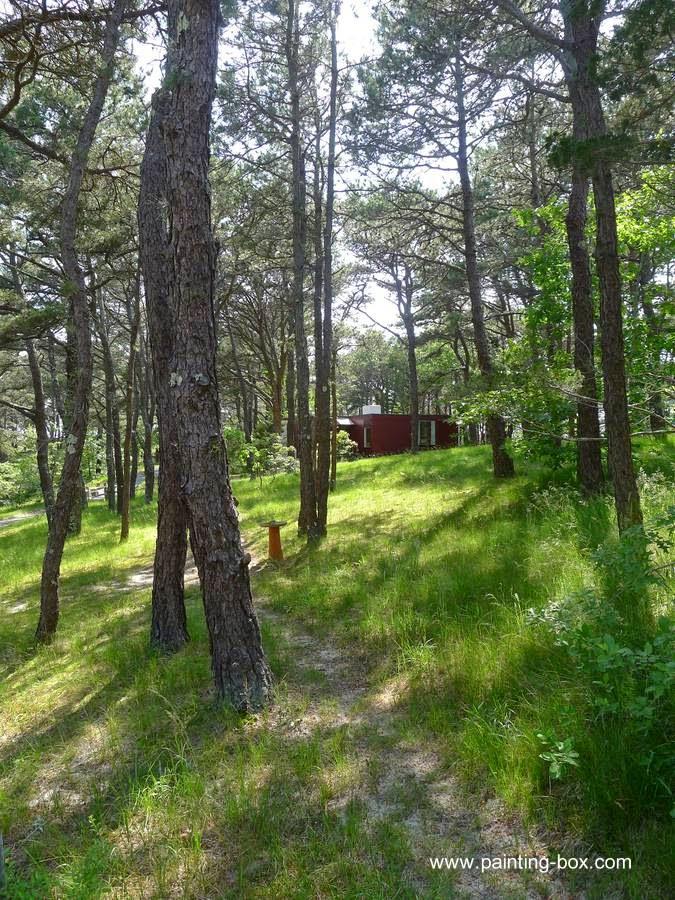 Modelo de cabaña moderna en un bosque