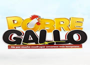 Ver Pobre gallo capítulos completos