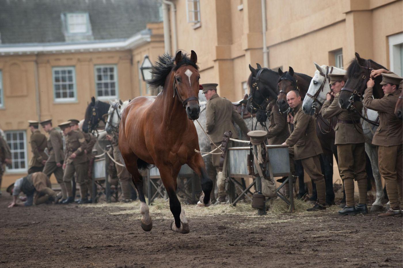 Золотой лошадь кинематографический приз 4