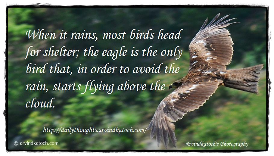 eagle quote