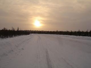 Зимник