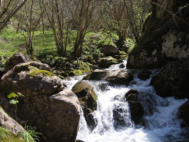 The Xanas Gorge Asturias Spain