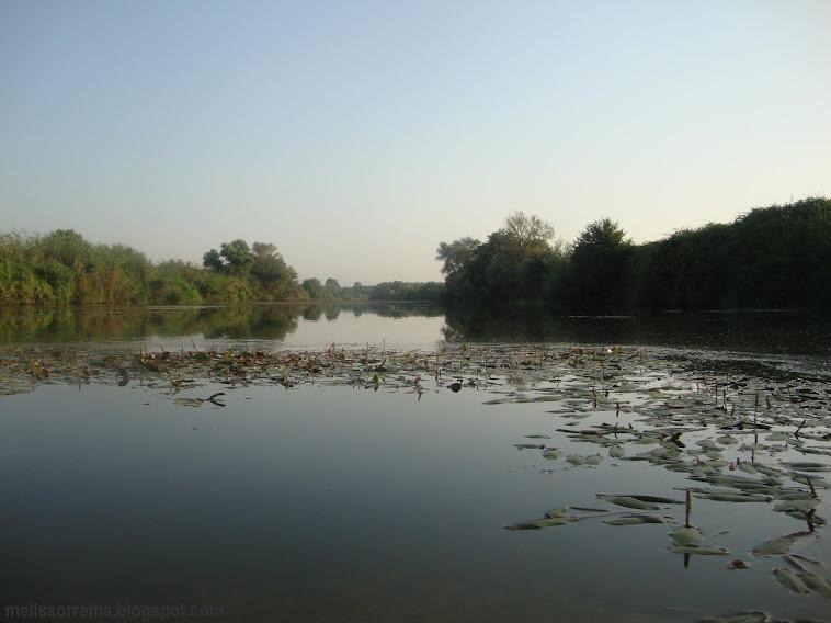 ΙΜΕΡΟΣ -  ποταμός  Λίσσος (  το μελισσόρρεμα λιγα μέτρα πριν εκβάλει στο θρακικό πέλαγος )
