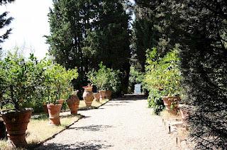 Italian Terracotta Garden Decorations