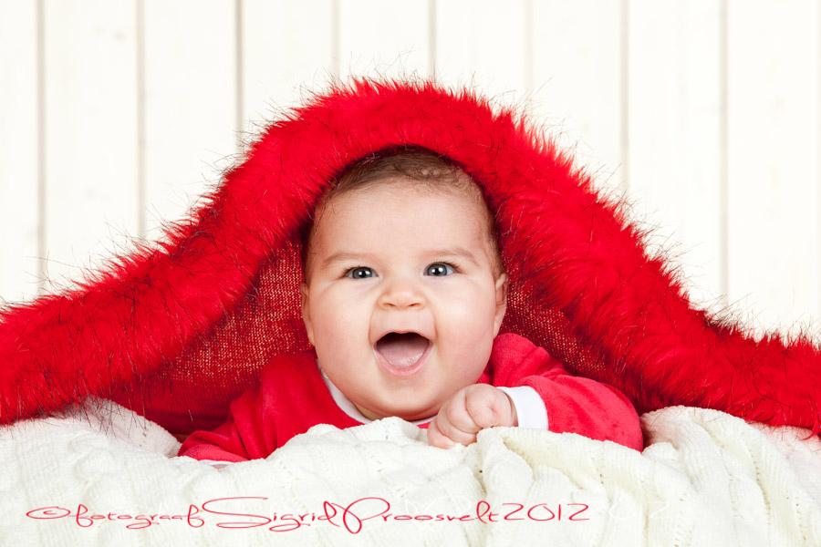 beebi-punase-salli-all-piilub