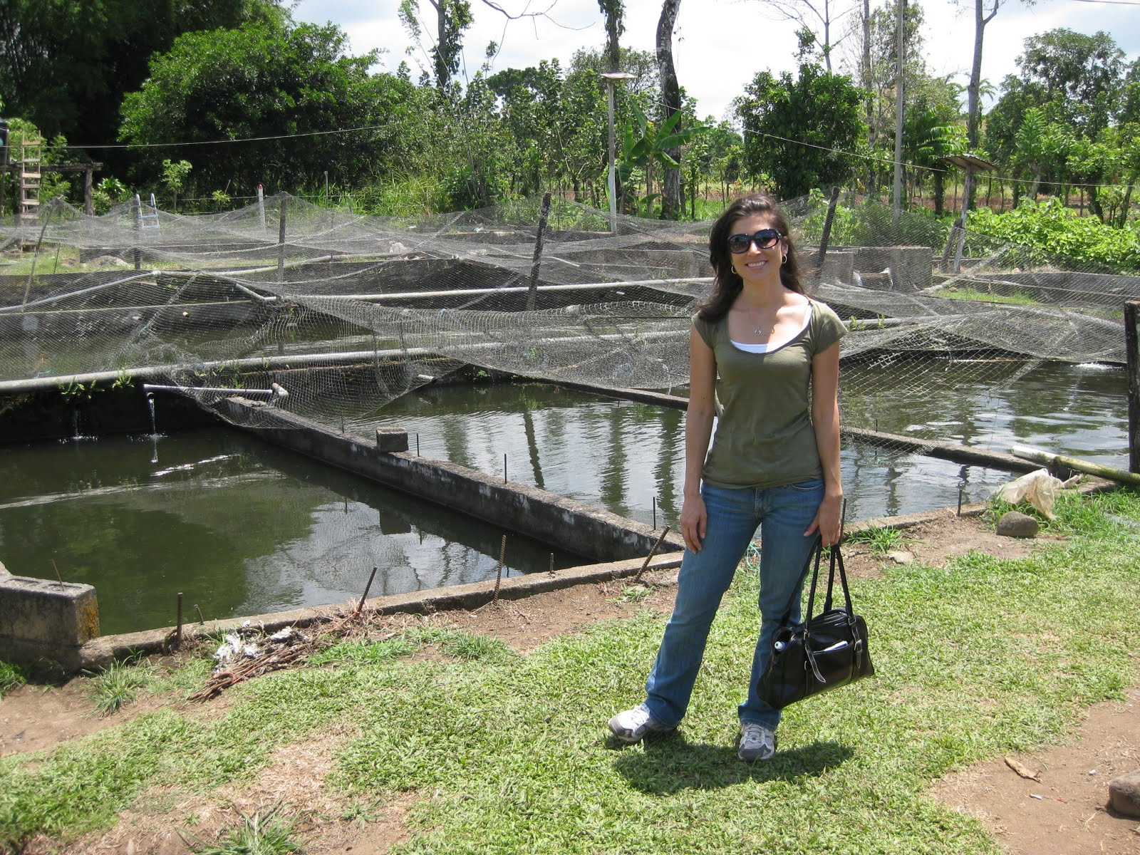 costa rica blogging: tilapia farming in costa rica