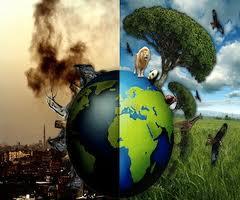 Ecolog a deterioro ambeintal y reciclaje deterioro ambiental for Importancia economica ecologica y ambiental de los viveros forestales