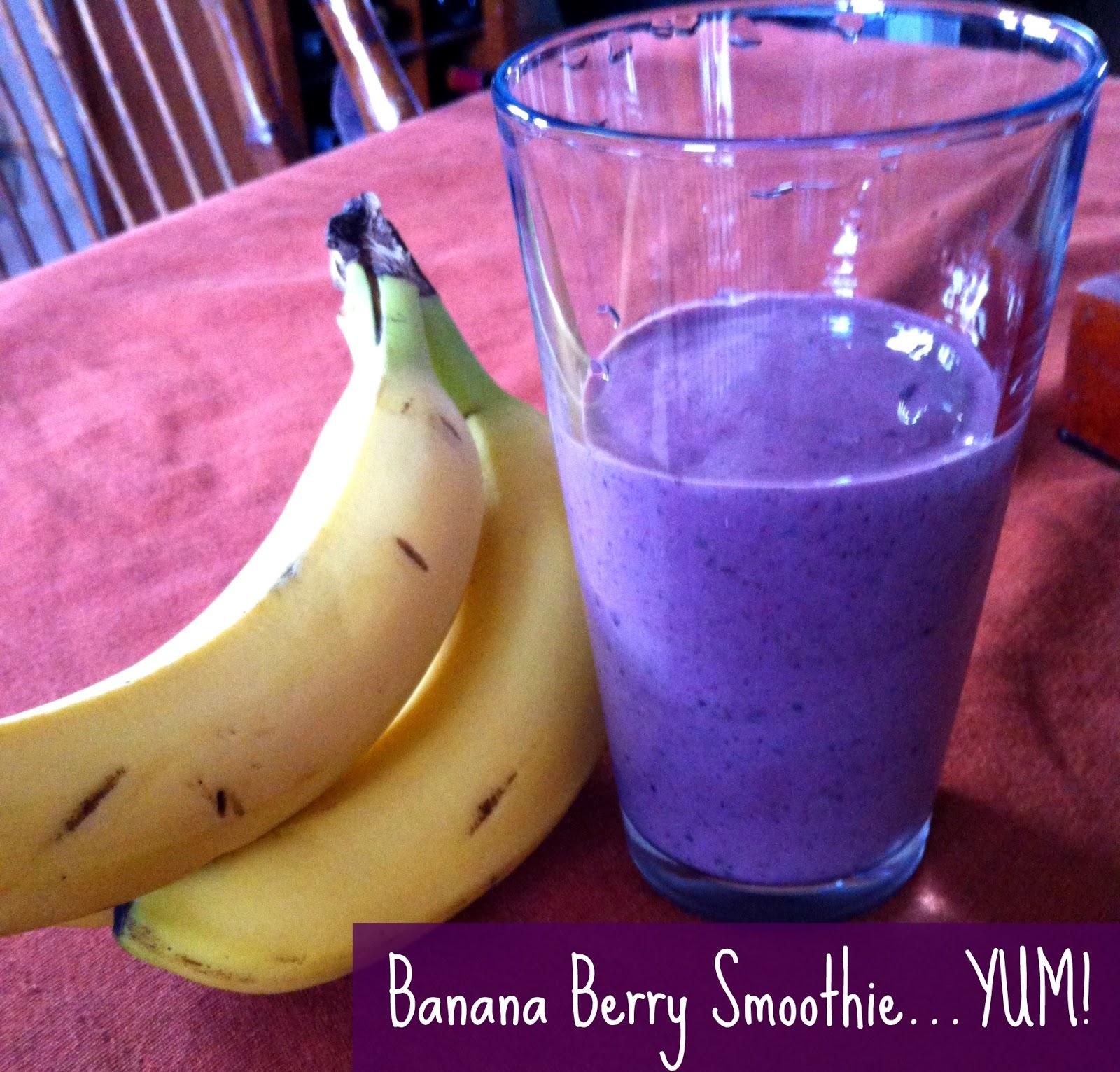 Sunshine Maker Meg: Delicious Banana Berry Smoothie