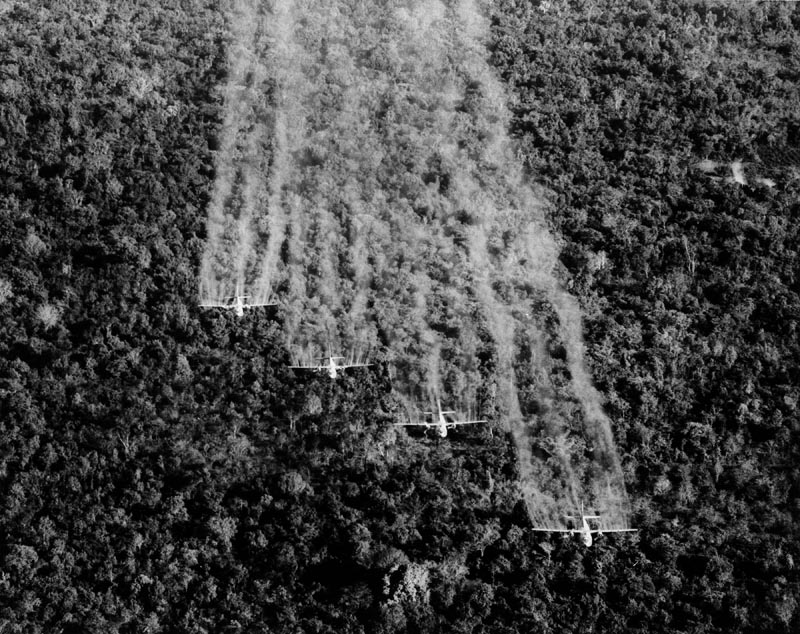 What is Agent Orange?