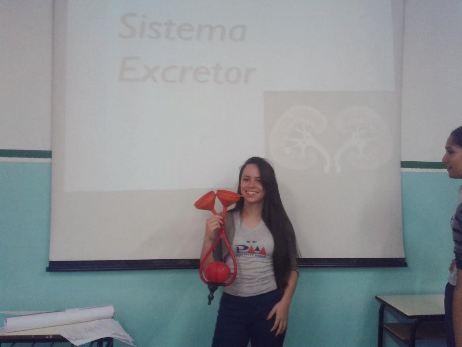 TURMA 21C  E O SISTEMA EXCRETOR- 4º BIM./2013